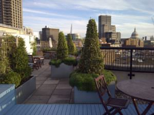 800px-Florin_Court_-_Garden_roof_terrace
