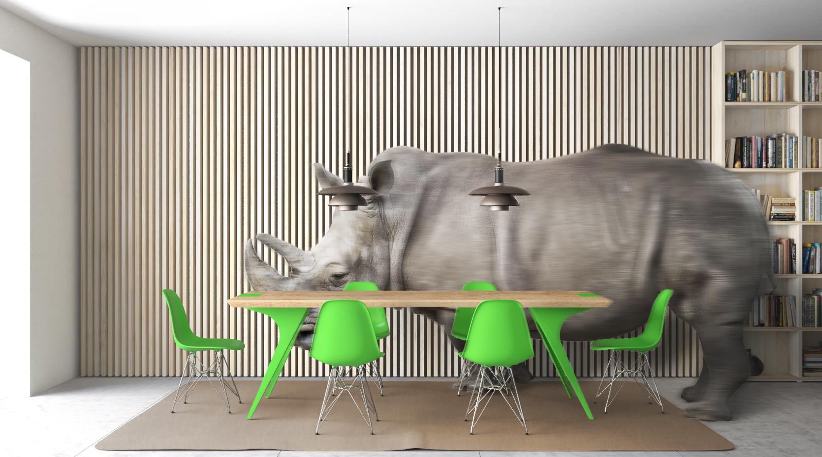 Ambientaz 1_DEF_1 Rhino
